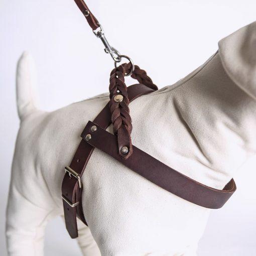 Miljøvennlig økologisk sele for hund 4