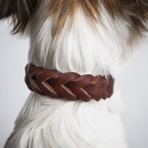 Miljøvennlig økologisk halsbånd for hunder 5