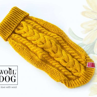 wool dog classic sunflower